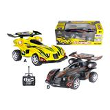 RC Buggy 1:16 with charger